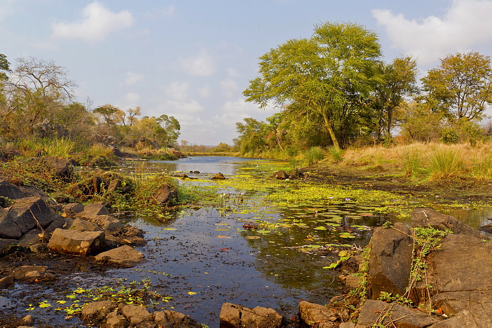 Machampane river in Limpopo National Park, Mozambique, Africa