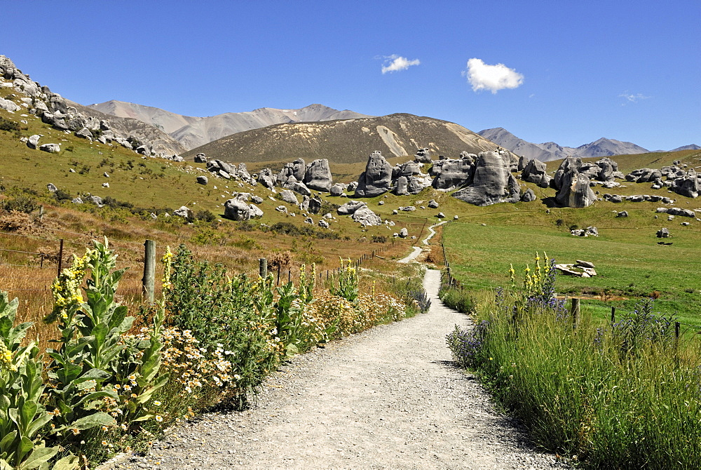 Footpath to the Castle Hill Limestone Rocks, Kura Tawhiti Conservation Area, Selwyn District, South Island, New Zealand
