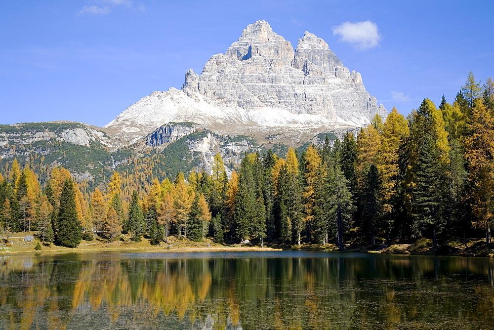 Autumn trees on lake Autorno, Tre Cime di Lavaredo, three distinctive battlement-like peaks, Dolomites, Province of Bolzano-Bozen, Italy, Europe
