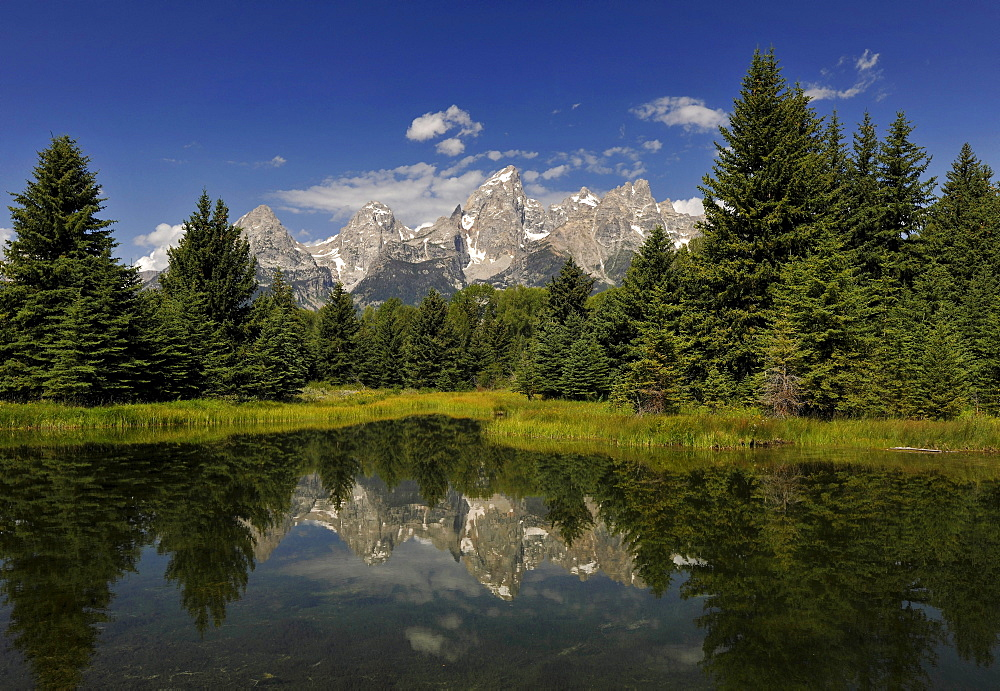 Snake river, Schwabacher Landing, with Teton Range mountain range, Grand Teton National Park, Wyoming, USA, North America