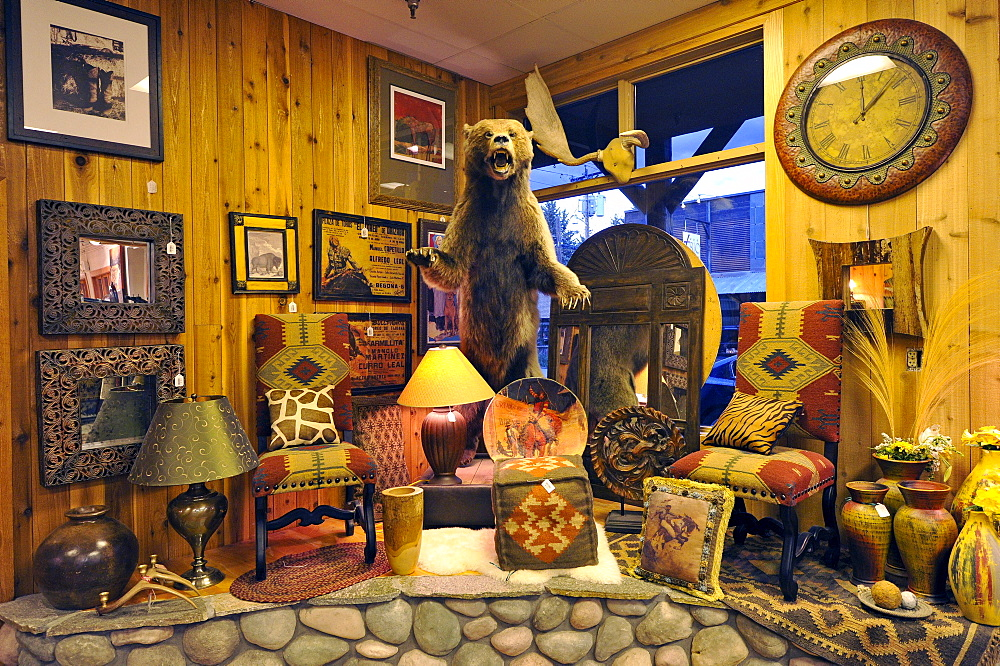 Interior, typical gift shop with Grizzly, Jackson, Grand Teton National Park, Wyoming, United States of America, USA