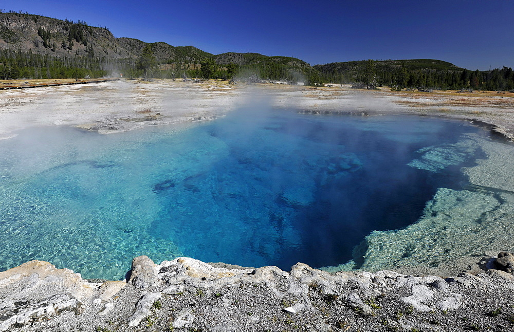 Sapphire Pool, geyser, Biscuit Basin, Upper Geyser Basin, Yellowstone National Park, Wyoming, United States of America, USA