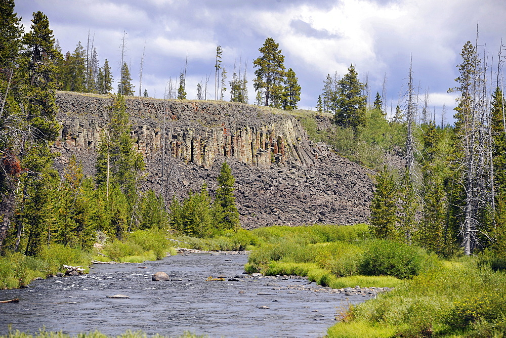 Sheepeater Cliffs, basalt cliffs, also known as Tukuaduka, Gardner River, Yellowstone National Park, Wyoming, United States of America, USA