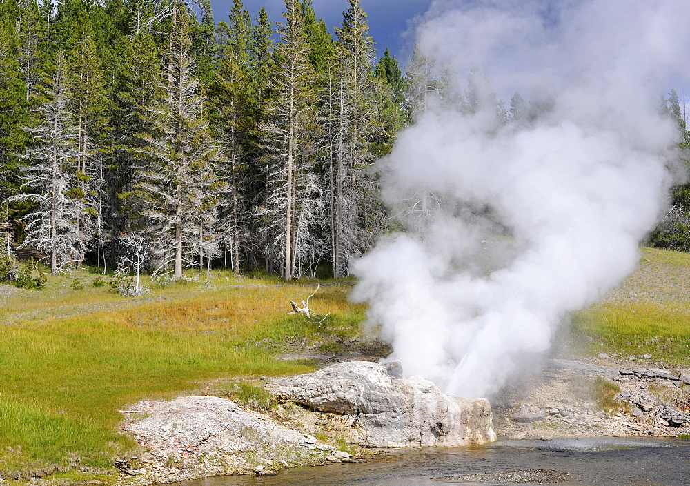 Riverside Geyser Eruption, Upper Geyser Basin, geothermal springs in Yellowstone National Park, Wyoming, United States of America, USA