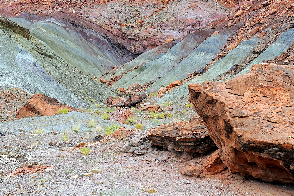 Stones coloured green by copper oxide, Marble Canyon, Arizona, USA