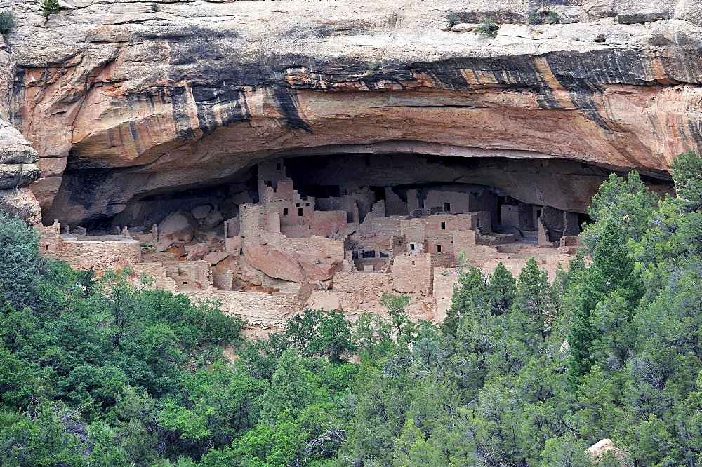 Cliff Palace, a cliff dwelling of the Native American Indians, about 800 years old, Mesa Verde National Park, UNESCO World Heritage Site, Colorado, USA, North America