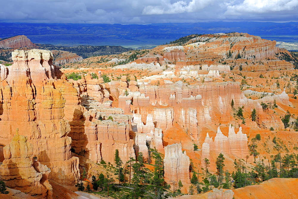 Rock formations and hoodoos in the evening, Bryce Canyon National Park, Sunset Point, Utah, USA, America