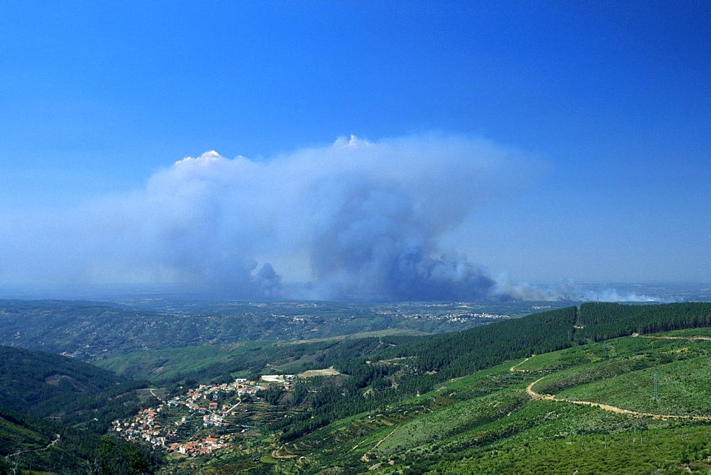 Forest fire in the Parque Natural da Serra da Estrela nature park, Loriga, Beira Alta, Portugal, Europe