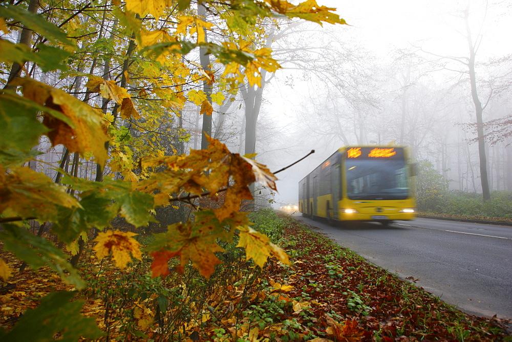 Highway in dense fog, autumn, visibility below 100 metres, Essen, North Rhine-Westphalia, Germany, Europe