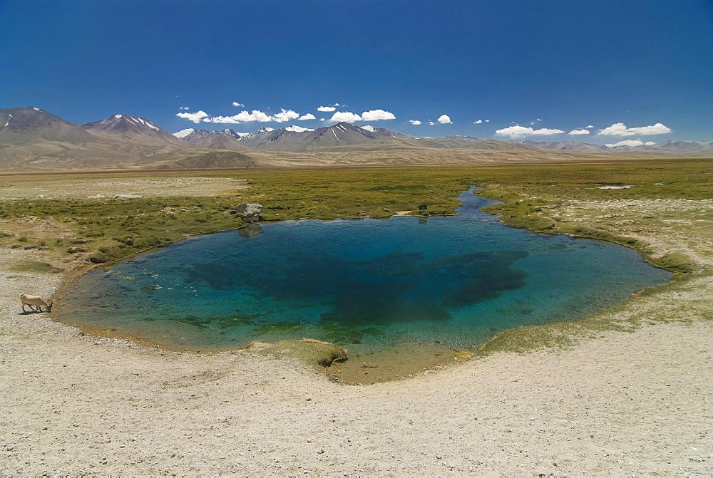 Ak Balyk spring, Tajikistan, Central Asia