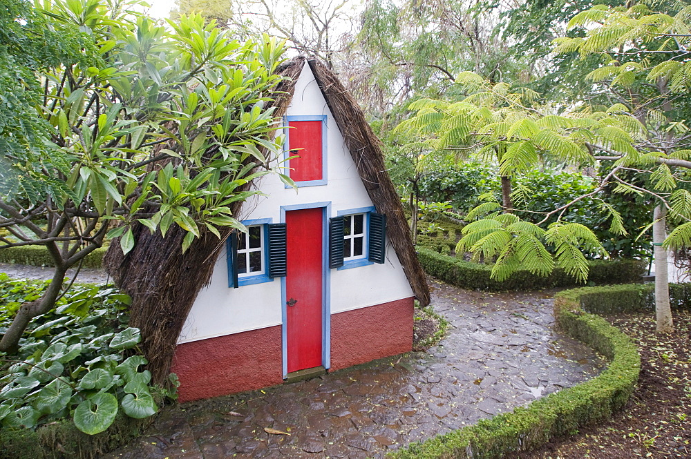Botanical garden, succulent garden, Casas de Colmo, traditional house with thatched roof, Funchal, Madeira, Portugal, Europe