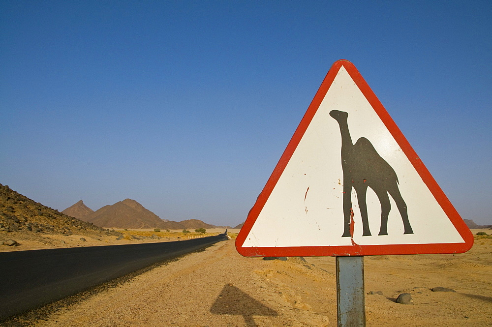 Warning sign warning of camels in desert, Essendilene, Algeria, Africa