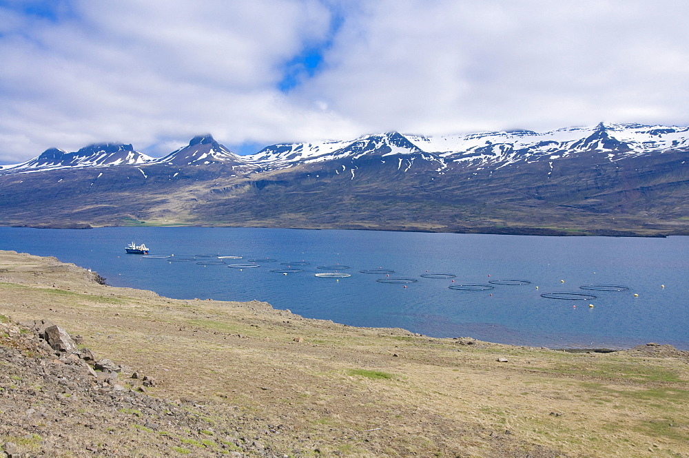 Fjord in front of mountain landscape in clouds with mobile shrimps farm, Eastern Coast, Iceland, Europe