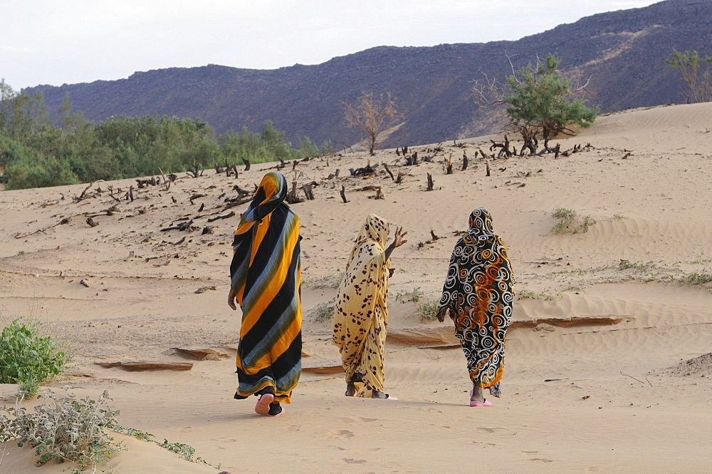 Veiled women with traditional dress walking near Atar, Mauritania, northwestern Africa