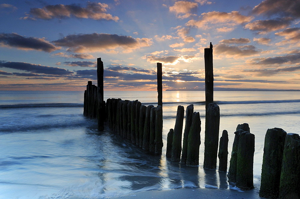 Groyne at sunrise on the beach of Juliusruh, Ruegen, Mecklenburg-Western Pomerania, Germany, Europe