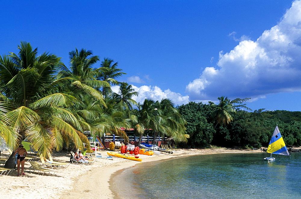 Bolongo Beach, St. Thomas island, U.S. Virgin Islands, Caribbean - 832-126768