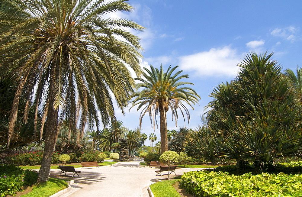 San Telmo Park, Las Palmas, Gran Canaria, Canary Islands, Spain, Europe