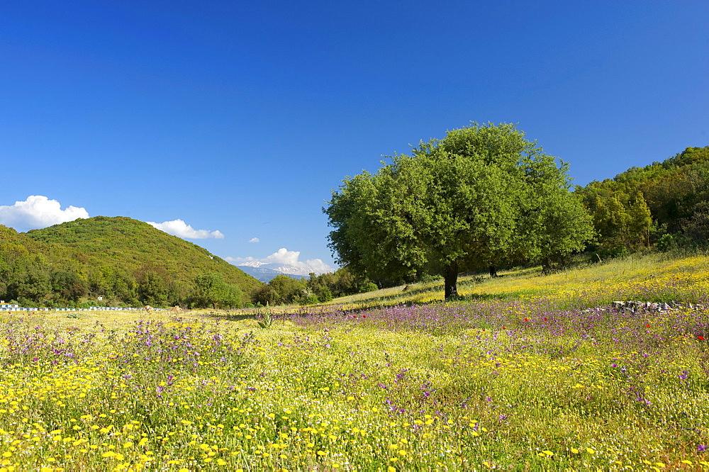 Landscape overlooking the Beydaglan, Bey Daglari Mountains, south coast of Turkey near Kas, Lycia, Turkey
