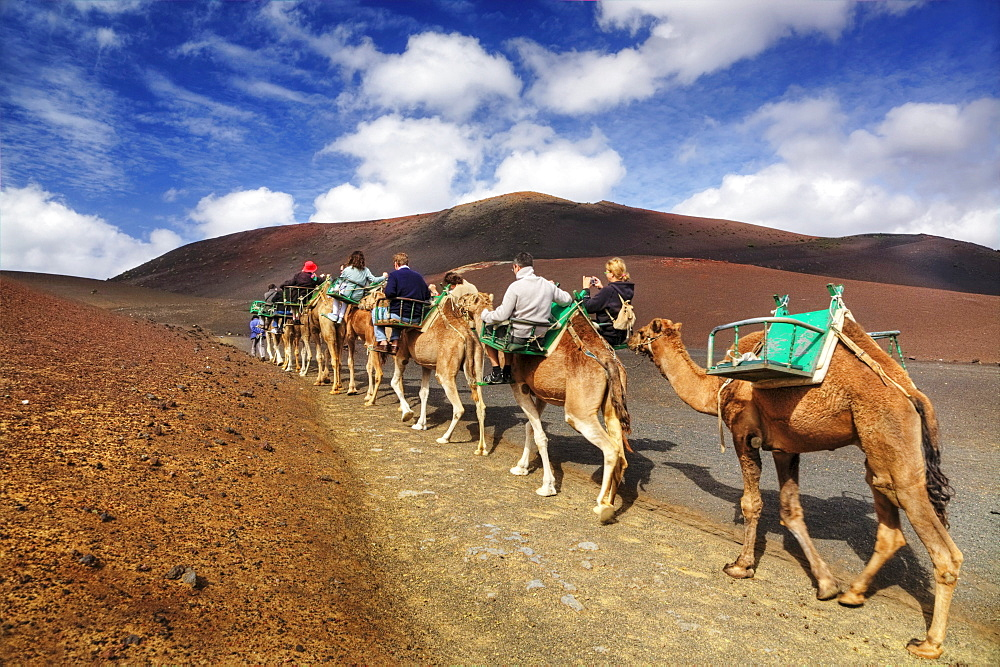 Tourists riding dromedaries in the Timanfaya National Park, Lanzarote, Canary Islands, Spain, Europe