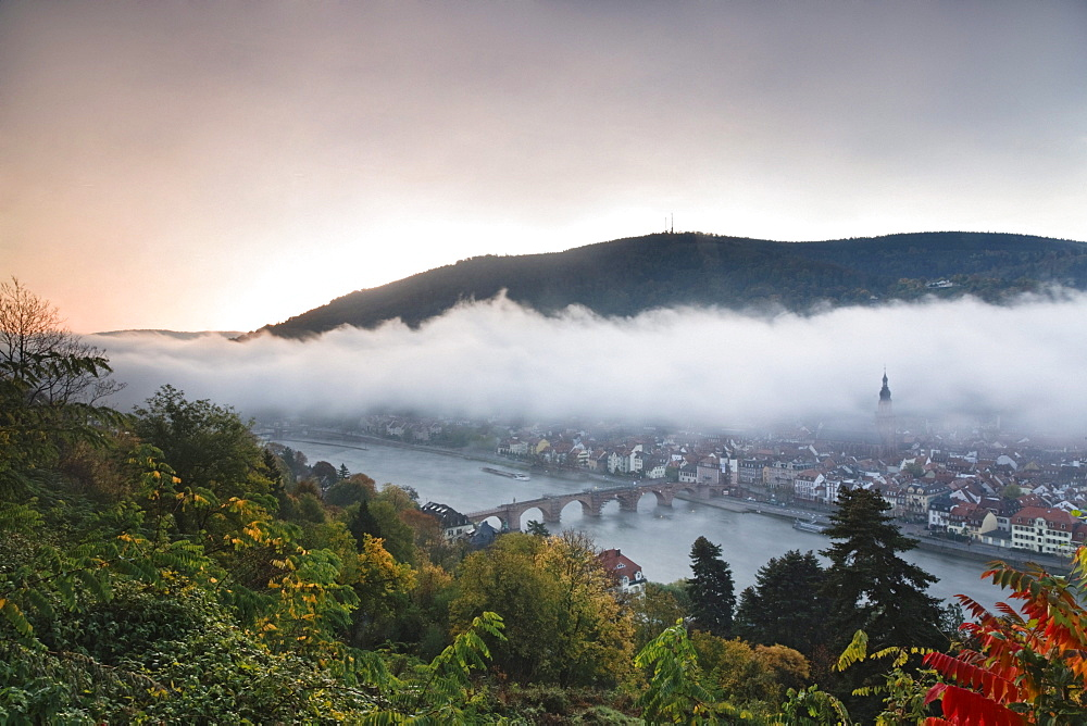 Panoramic views from the Philosophenweg, philosopher's way, across the old town of Heidelberg on a misty autumn morning, Baden-Wuerttemberg, Germany, Europe