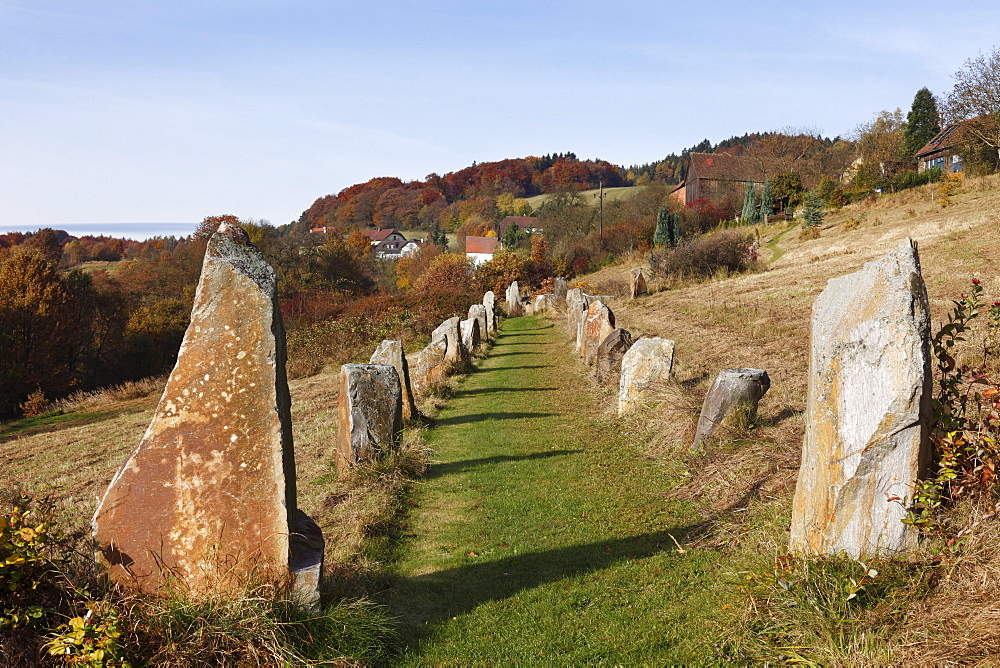 Stone avenue, Celtic megalith replicas, Geyersberg, Bergen municipality in the Dunkelsteinerwald area, Wachau, Mostviertel region, Lower Austria, Austria, Europe