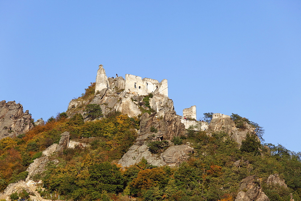 Ruine Duernstein castle ruins, Wachau, Waldviertel, Lower Austria, Austria, Europe