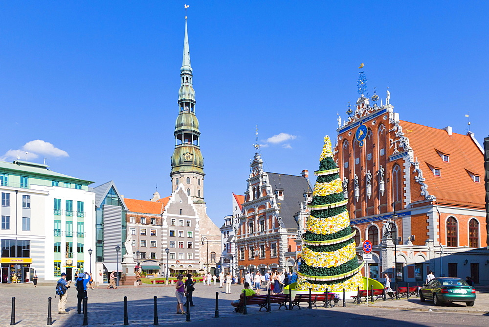 500th jubilee Christmas Tree, St Peter's Church, Peterbaznica, House of the Blackheads, Melngalvju nams, Roland's statue, Town Hall Square, Ratslaukums, old town, Vecriga, Riga, Latvia, Northern Europe