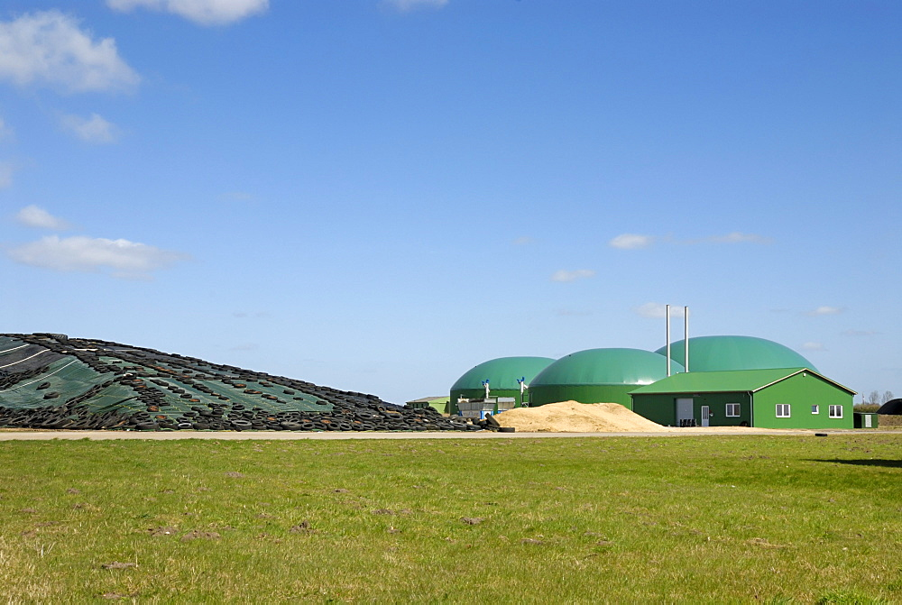 Biogas plant, biomass power plant, with combined heat and power unit, CHP, and an adjacent silo, maize silage