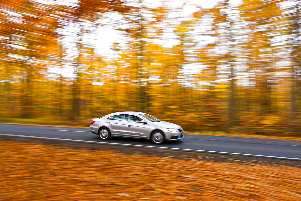 Car driving on a country road in autumn, Hesse, Germany, Europe - 832-129291