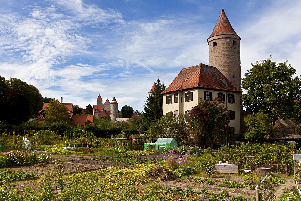 Overlooking the old town with the Hertelsturm and Krugsturm towers, Dinkelsbuehl, Ansbach, Middle Franconia, Bavaria, Germany, Europe