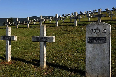 Crosses with names of soldiers of Jewish origin in the military cemetery on Blutberg hill, in the back the the Vosges mountains, Sigolsheim, Alsace, France, Europe