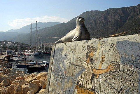 Seal, sculpture, wall painting in the port of Kas, Lycian coast, Antalya Province, Mediterranean, Turkey, Eurasia