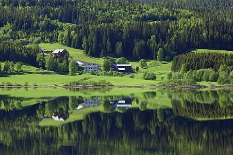 Lonely farm reflected in the water of Lake Morrivatnet, Norway, Scandinavia, Europe