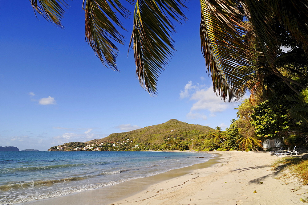 Beach, Friendship Bay, Bequia, Saint Vincent, Caribbean