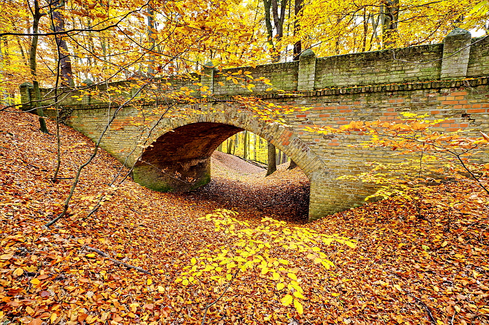 Bridge in the Glienicker Park in autumn, Berlin, Germany, Europe - 832-131387