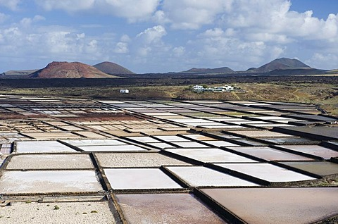 Sea salt refinery, pools of brine, Salinas de Janubio, Lanzarote, Canary Islands, Spain, Europe
