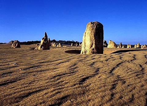 Rock formation The Pinnacles, Nambung National Park, Western Australia, Australia