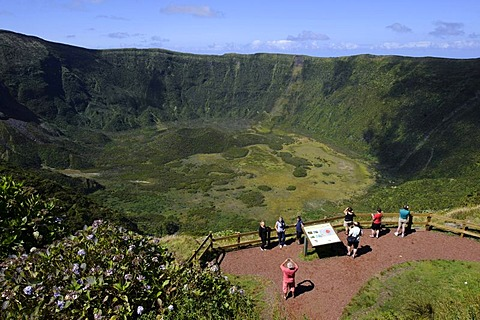 Caldeira on the island of Faial, Azores, Portugal