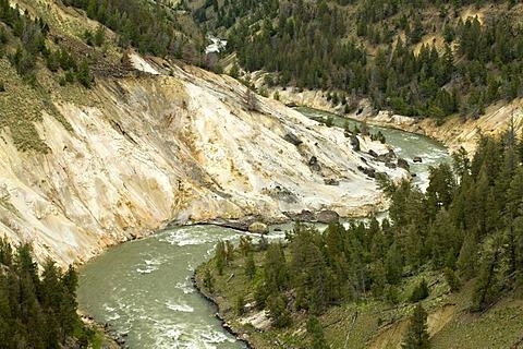 Yellowstone River near Tower Fall, Yellowstone National Park, Wyoming, USA, North America