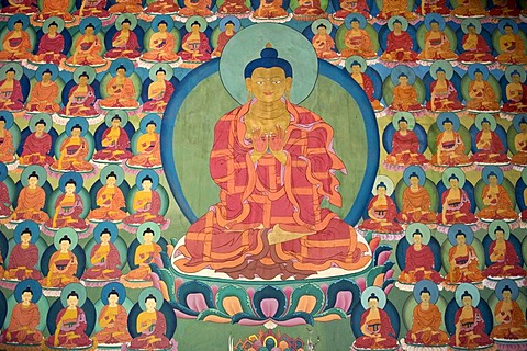 Tibetan Buddhism, wall painting, meditating Buddha, many small Buddhas, Chemre Gompa Monastery, Chemrey, Ladakh region, Jammu and Kashmir, India, South Asia