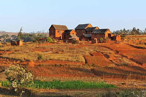 Typical village in the highlands around Antananarivo or Tana, formerly Tananarive, Madagascar, Africa