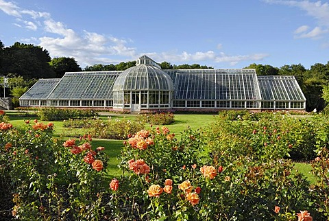 Victorian glass greenhouse in a rose garden in the park of Castle Ardgillan in Skerries, County Dublin, Republic of Ireland, Europe