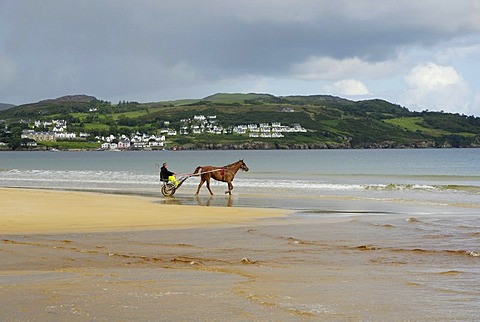 Trotter training with his horse on the sandy beach of Portsalon, County Donegal, Ireland, Europe