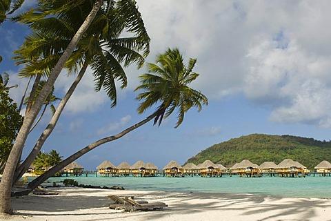 Beach, Pearl Beach Resort, Bora-Bora, French Polynesia, Pacific Ocean