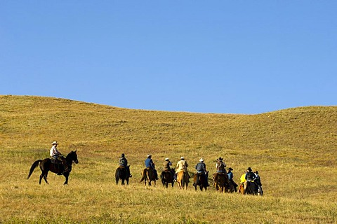 Cowboys at Bison Roundup, Custer State Park, Black Hills, South Dakota, USA, America
