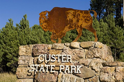 Custer State Park, Black Hills, South Dakota, USA, America