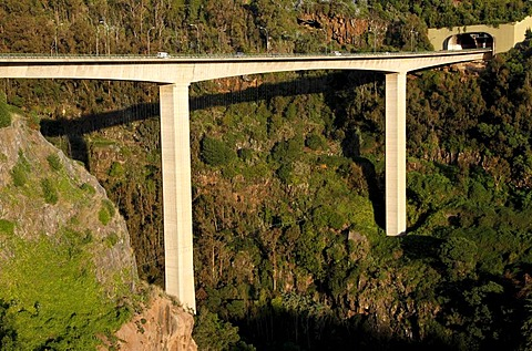 Highway viaduct, Monte, Funchal, Madeira, Portugal, Europe