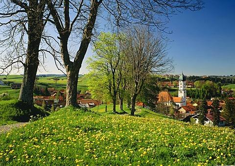 Nesselwang, Allgaeu, Bavarian Swabia, Bavaria, Germany, Europe