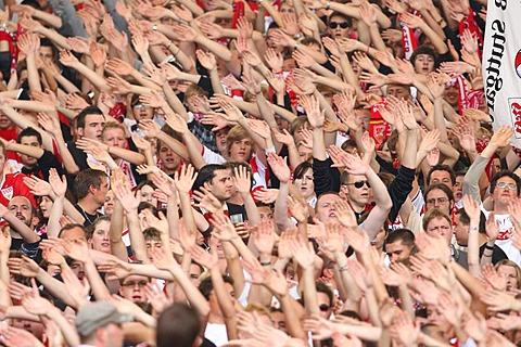 Fans, soccer
