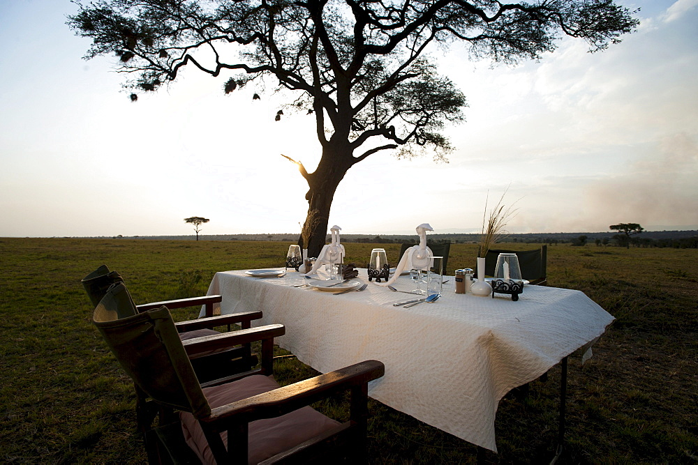 Elegant luxury camp, dinner table, Living under Canvas, Serengeti, Tanzania, Africa